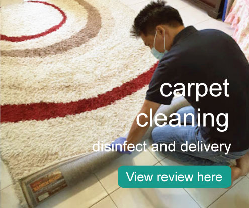 carpet cleaning disinfect curtain dismantle cleaning and assemble pick up and delivery